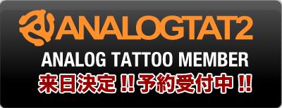 analog_top